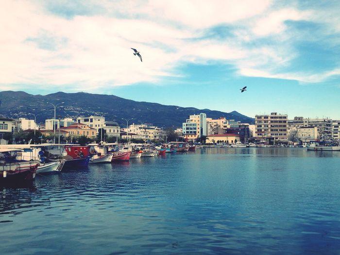Relaxing Port Landscape Blue