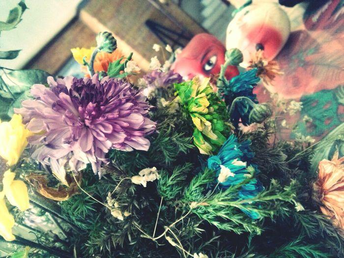 Flores en la casa