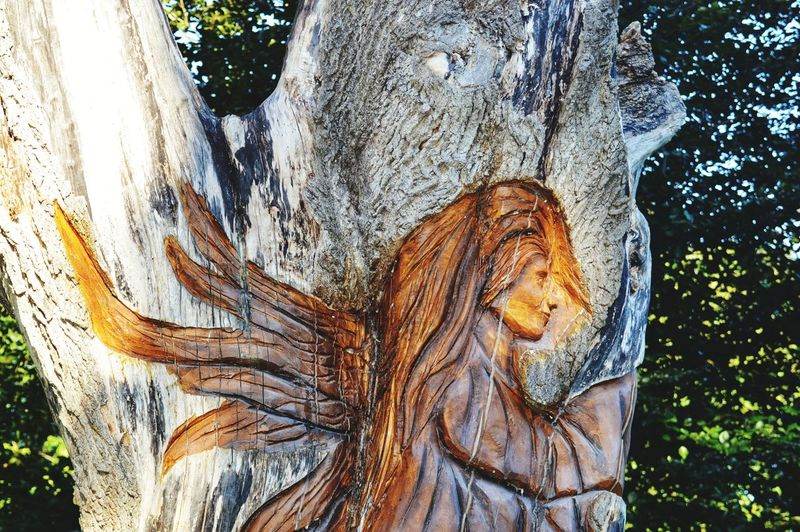 Art in the park. Tree Close-up Sculpture Angel Sculpted Human Representation Carving - Craft Product Art