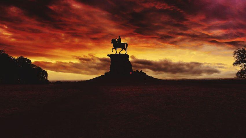 Statue Windsor Great Park Copper Horse Outdoors Landscape Windsor Berkshire Horse