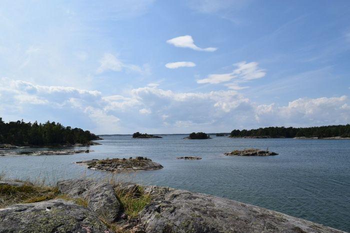Stockholm Archipelago Nature Summer ☀ Archipelago