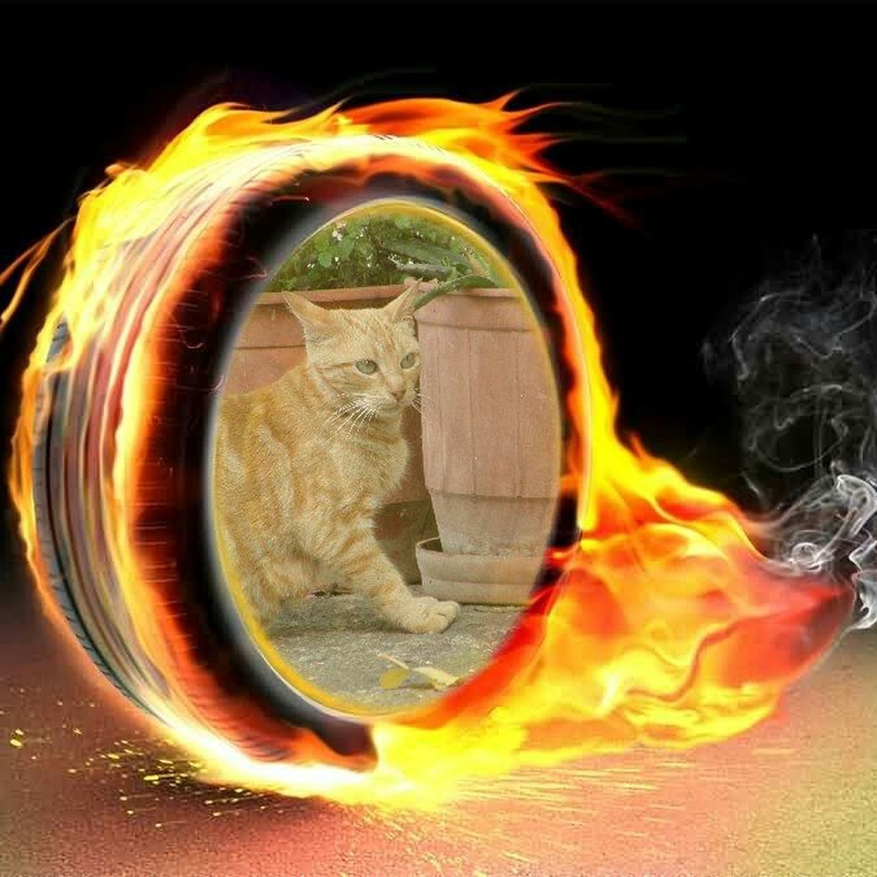 burning, flame, heat - temperature, orange color, motion, danger, no people, destruction, close-up, indoors, day