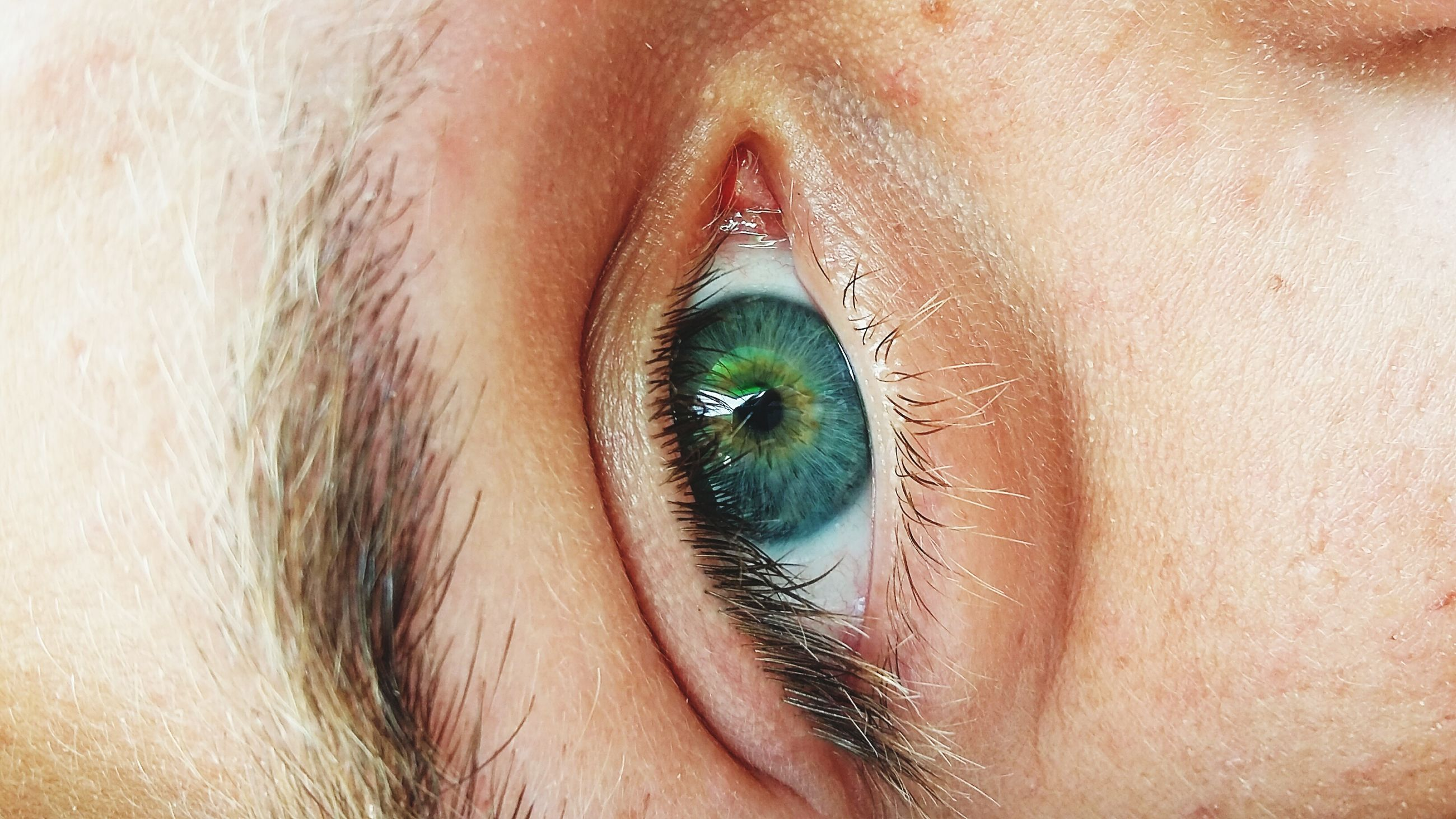 part of, close-up, cropped, person, human skin, unrecognizable person, lifestyles, human eye, leisure activity, detail, focus on foreground, selective focus, eyelash, extreme close-up, macro, sensory perception