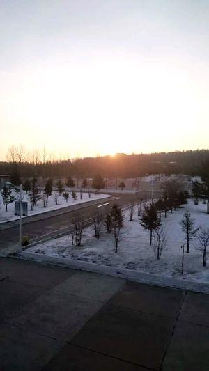论太阳升起