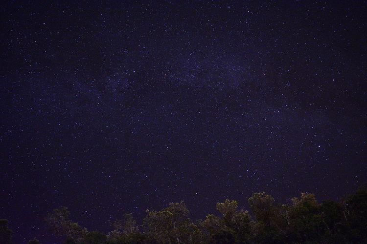 Star Via Lactea