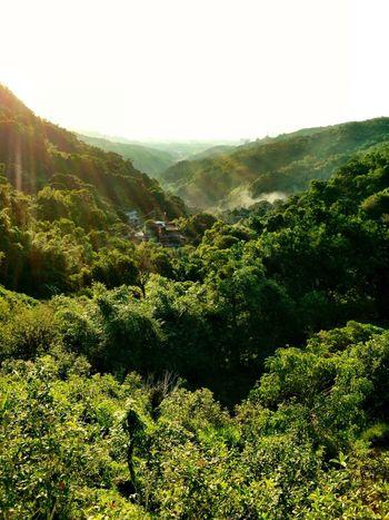 該睡囉~??? Mountains Sunset Green