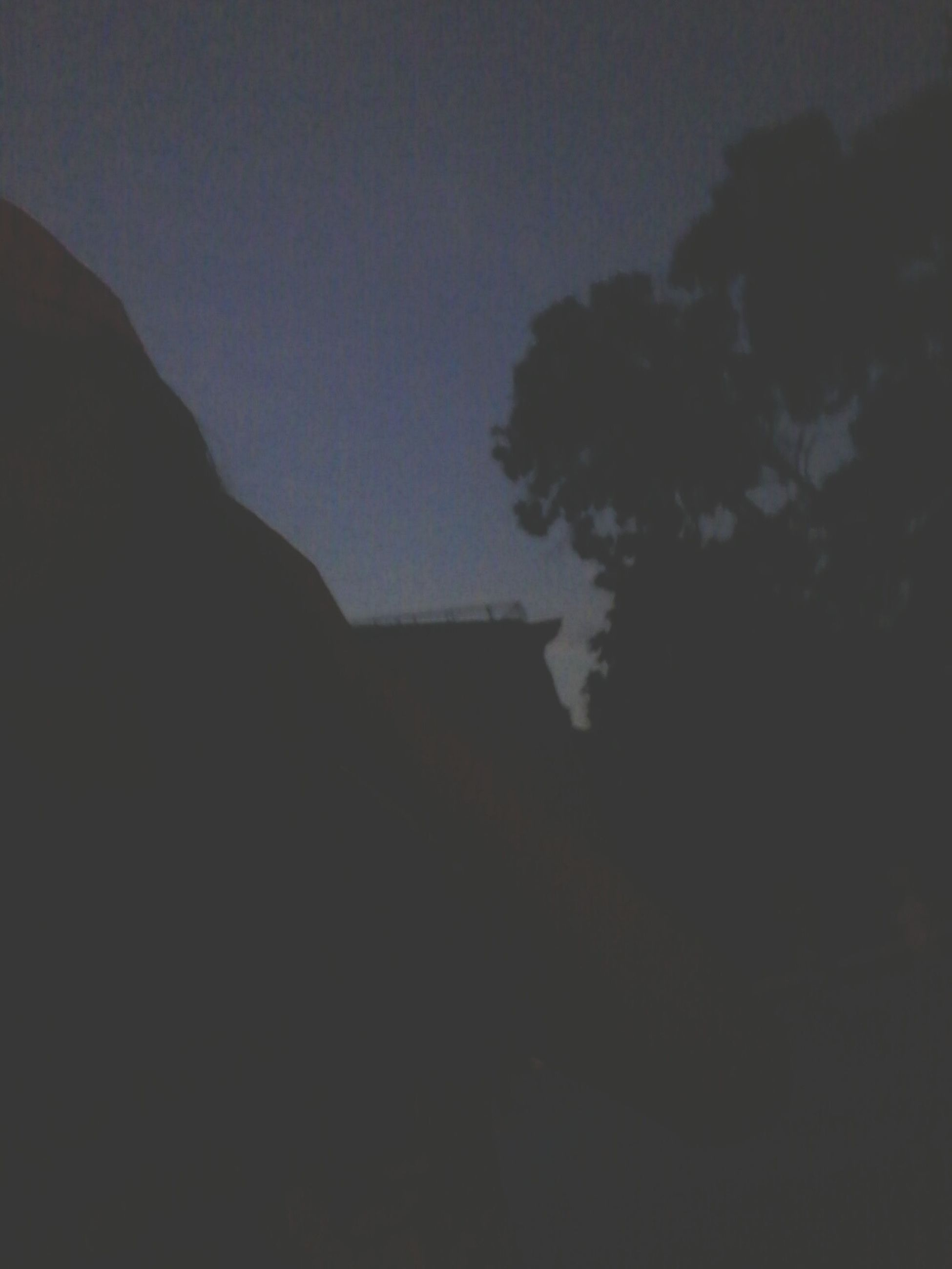silhouette, nature, sky, low angle view, beauty in nature, scenics, no people, outdoors, tree, clear sky, night