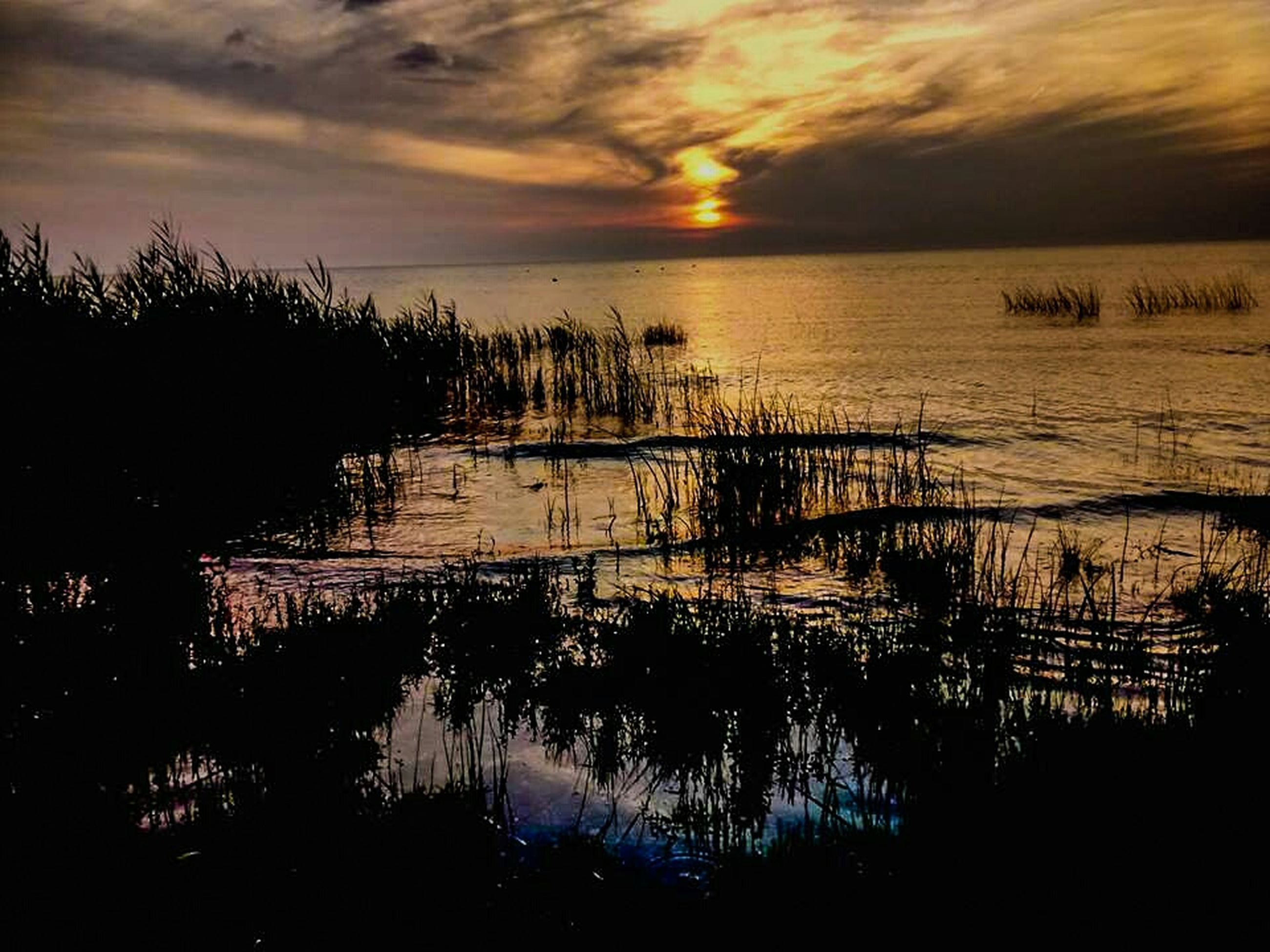 sunset, water, tranquil scene, tranquility, silhouette, sky, scenics, beauty in nature, sea, reflection, sun, nature, horizon over water, idyllic, cloud - sky, cloud, lake, orange color, plant, calm