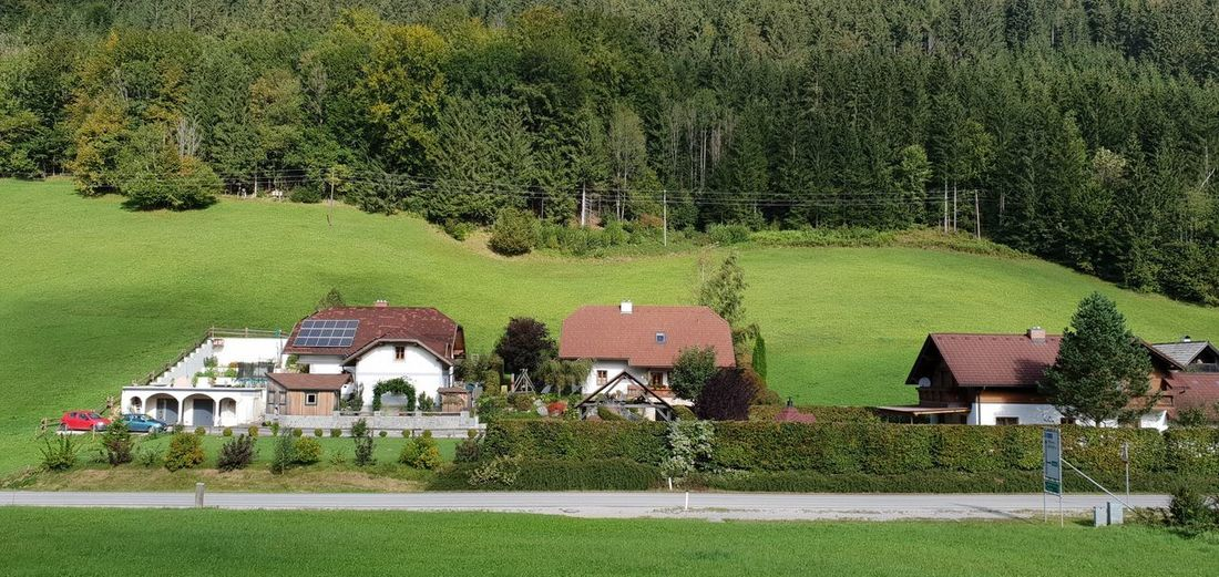 Houses and trees on field by house