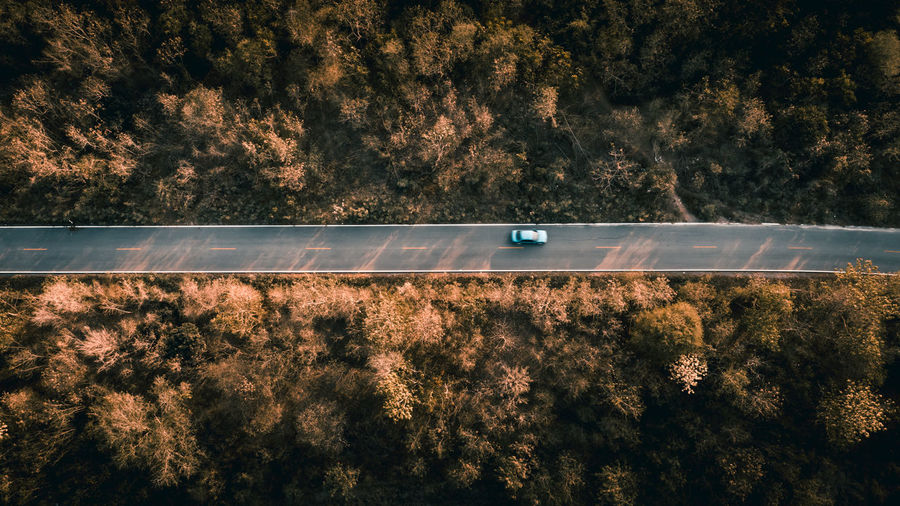 Aerial view of car moving on road amidst trees during sunset