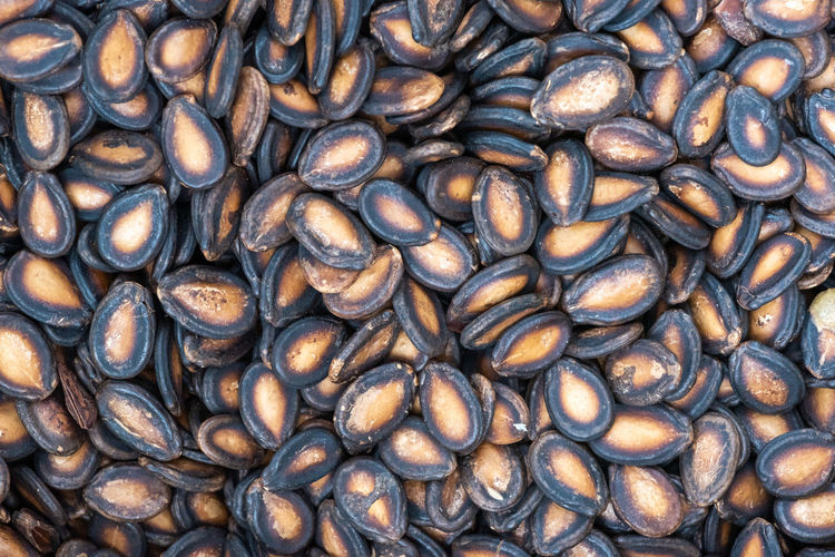 black melon seed Full Frame Backgrounds No People Large Group Of Objects Food And Drink Food Close-up Abundance Freshness Nature Raw Food Roasted Coffee Bean Pattern Indoors  Healthy Eating Wellbeing High Angle View Directly Above Textured  Black Melon Seed Melon Seeds Seeds