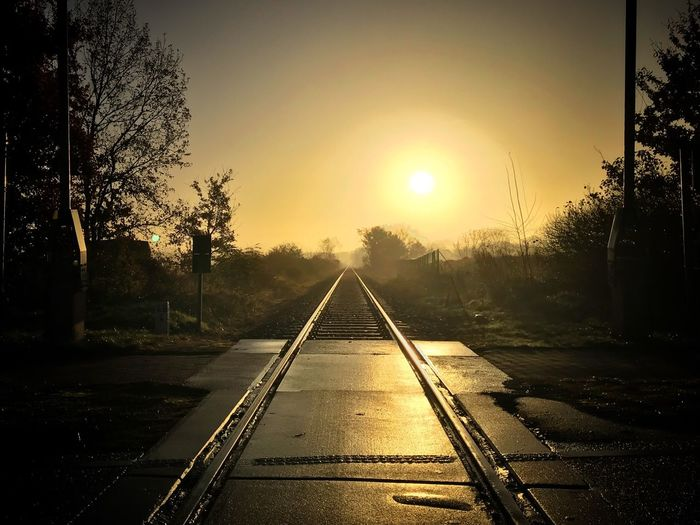 Tree Sunset Sun Transportation The Way Forward Railroad Track No People Sunlight Sky Nature Outdoors Beauty In Nature Sunrise Sonnenuntergang Sonnenaufgang Fog Foggy Foggy Morning Nebel Germany Schienen Railroad Track Brandenburg Barnimerland Barnim