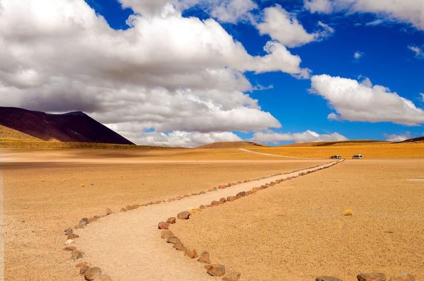 Beautiful path through the Atacama desert in Chile Altiplanic Lagoons Altiplano America Andes Area Atacama Atacama Desert Chile Desert Grass High Lagoon Landscape Miscanti Mountain Nature Park Road Salt Sanpedrodeatacama South Tourism Travel Valley View