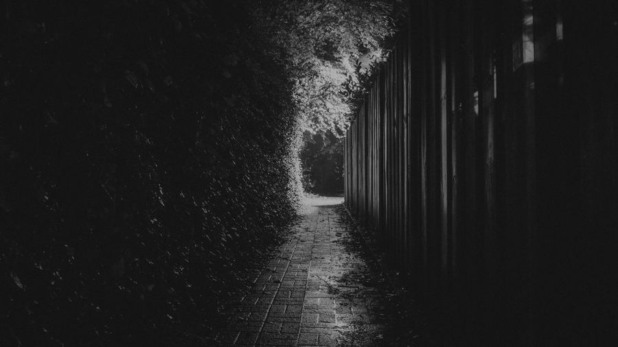 In the Night there was a Dark Tunnel , it was a Playground for dDarkness And Light . I thought Black And White Will bring the Dramatic to the visitor by watching this Monochrome , Black & White picture.