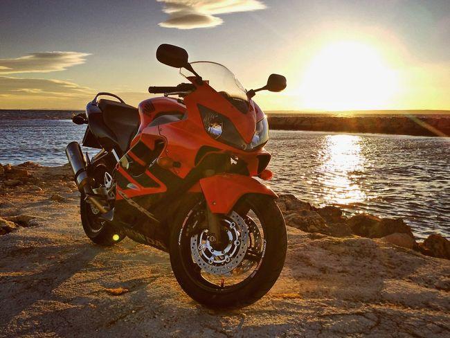 My bike Cbr600f4i HRC Honda First Eyeem Photo