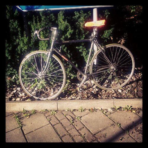 Sykkel Bicycle Bikesaroundtheworld Bike cykel racer october sunshine black orange autumn