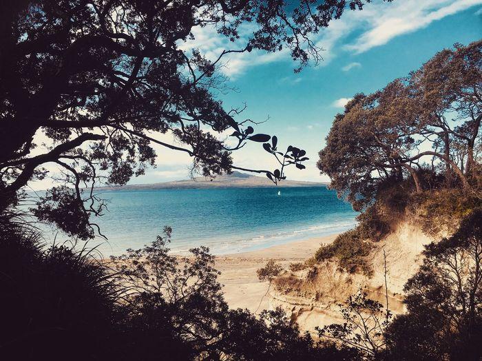 Takapuna Beach 📸 Takapuna Water Sky Scenics - Nature Outdoors Beach