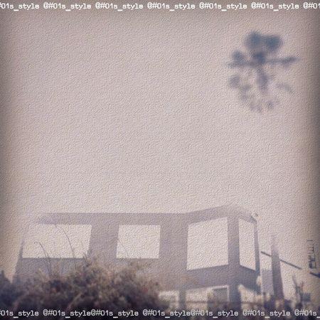 稲村ヶ崎駅から、徒歩7分。 01s_style Minimal Minimalist Minimalism Inamuragasaki Shonan Sea Ocean Architecture Palm Tree