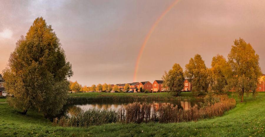 Pond Landscape Nature Rainbow Water