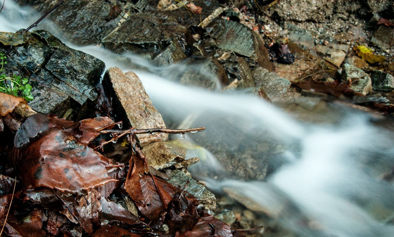 long exposure, motion, nature, water, waterfall, leaf, high angle view, rock - object, no people, blurred motion, outdoors, beauty in nature, day, animal themes, close-up