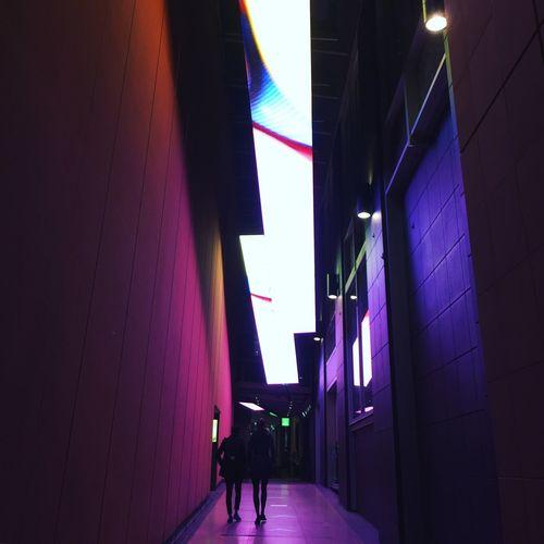 VIVID Sydney | Purple Light Show | The Street Photographer - 2016 EyeEm Awards