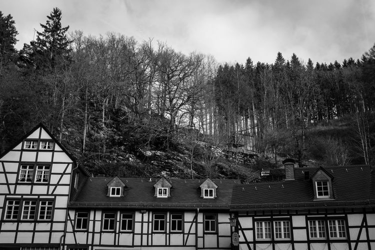 Monschau, Germany Monschau Monschau Eifel Germany Germany Blackandwhite Tree Built Structure Architecture Building Exterior Building Sky Cloud - Sky Day Residential District No People Growth Outdoors House Roof High Angle View Forest