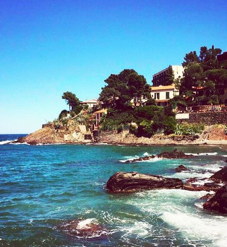 Blue Sky Water Sea Blue Nature Outdoors No People Clear Sky Beach Beauty In Nature Sky Tree Collioure France Southoffrance Beautiful Landscape Sunny Day