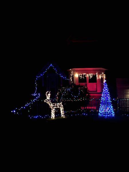 Best Christmas Lights Friends House Lights Night Nightphotography EyeEm Best Shots EyeEmBestPics Eyeemcanada EyeEmToronto