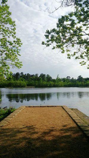 Lake Lakeshore Lake View Serine Serenity