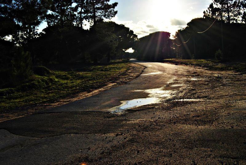 Estrada Caminho Road Chuva Rain Portugal Alcochete Alcochete-portugal