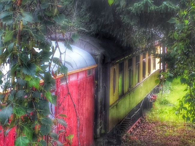 Train Station Transportation Abandoned & Derelict Hidden Beauty Train Travelphotography Trainstation Train Tracks Colours The Meadow Landscape Green Outdoor Photography Outdoors