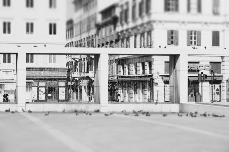 Architecture Art, Drawing, Creativity Artist Artistic Photography Building Building Exterior Built Structure City City Life City Street Day Façade Focus On Foreground No People Outdoors Poster Road Street Street Art Streetart Streetphoto_bw Streetphotography Surface Level Water