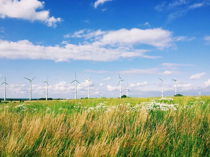 Windmills on grassy field against sky