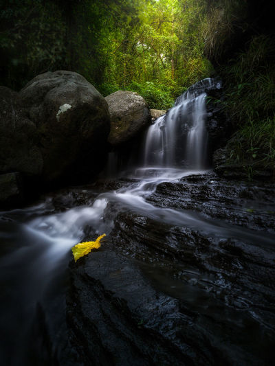 EyeEm Selects Beauty In Nature Long Exposure Nature Water No People Power In Nature Freshness Motion Day Waterfall Outdoors Travel Destinations Travel Photography Waterfall In The Jungle Outdors No People Be. Ready. Amazing View Nature Perfection Nature Photography Sulawesi Selatan Barru Forest Tranquility See The Light EyeEmNewHere