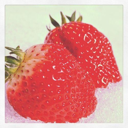 いちご 食べ放題 いや飲み放題 苺 狩り イチゴガーリィ Strawberry Picking Strawberrying 甘いと書いてシアワセと読む Sweet 紅白 雪苺 まいあー♪ シャスデリ♪ 食のオリンピック 目指せ金メダル !!Fatjapan !!
