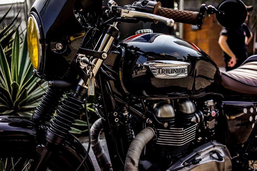 Triumph Motorcycles Thruxton Bonneville Cafe Racer