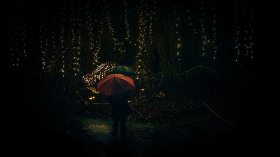 Illuminated String Lights At Night