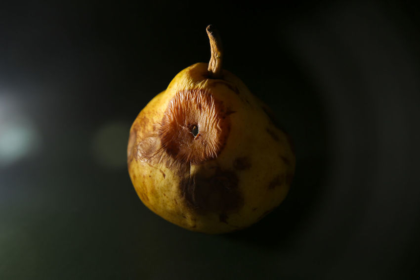Rotten pear, project about food waste Aliment Food Waste Awareness Food Waste Photojournalism Rubbish Black Background Documentary Famulari Food Food And Drink Fruit Garbage Pear Rotten Rotten Food Rotten Fruit Rotting Studio Shot Waste