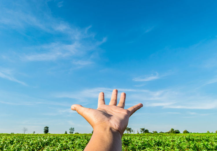 Cropped hand gesturing on field against blue sky