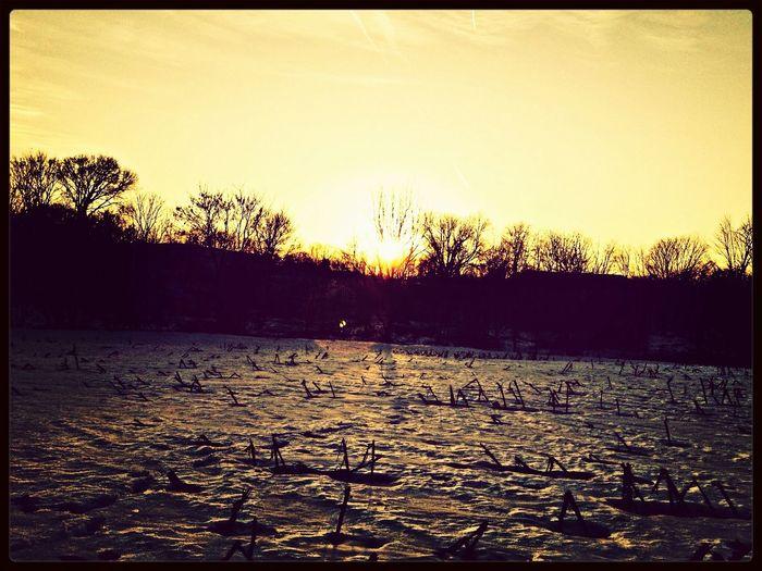 Sunset(: hehe <3
