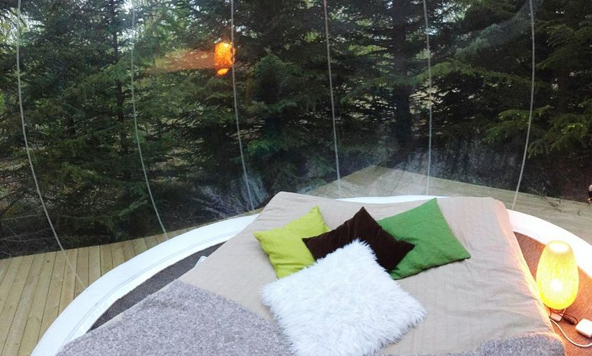 This is our Bubble room, a special lodging in the middle of the forest in Iceland. You can enjoy a clear sky and the stars above. Star Gazing feel the journey Unique Lodging Bubble Hotel Travel Experience Iceland Vagabond Hotel Unique Hotel Wilderness