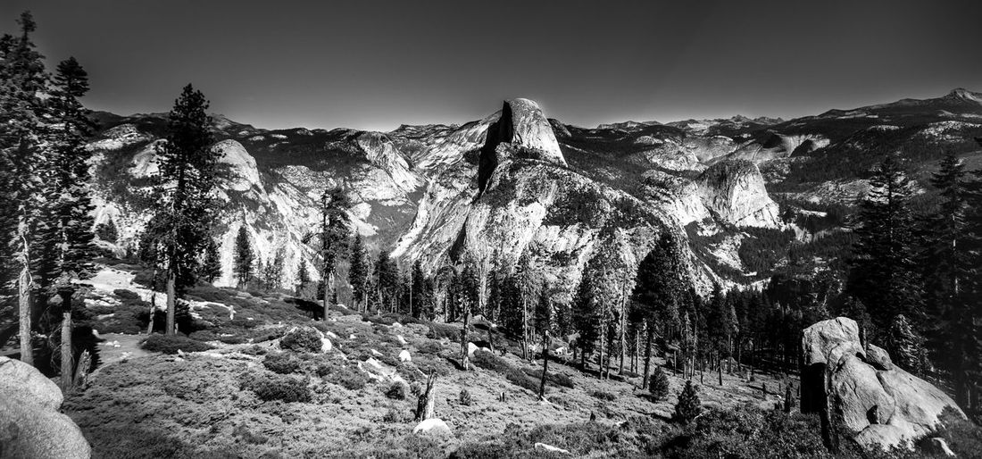 Beauty In Nature Black & White Black And White Photography Black&white Blackandwhite Blackandwhite Photography Blackandwhitephotography Clear Sky Countryside Day Geology Nature No People Non-urban Scene Outdoors Remote Rock - Object Rock Formation Scenics Solitude Tranquil Scene Tranquility Tree Yosemite Yosemite National Park