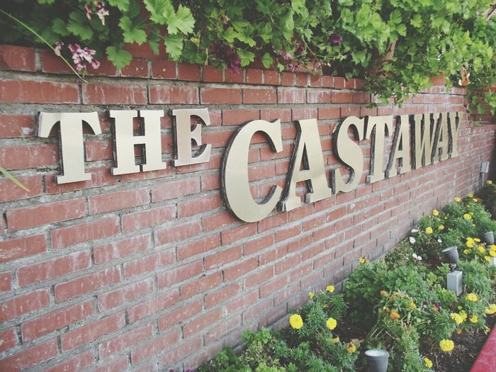 best place to eat The Castaway Sunday Brunch Buffet Good Food