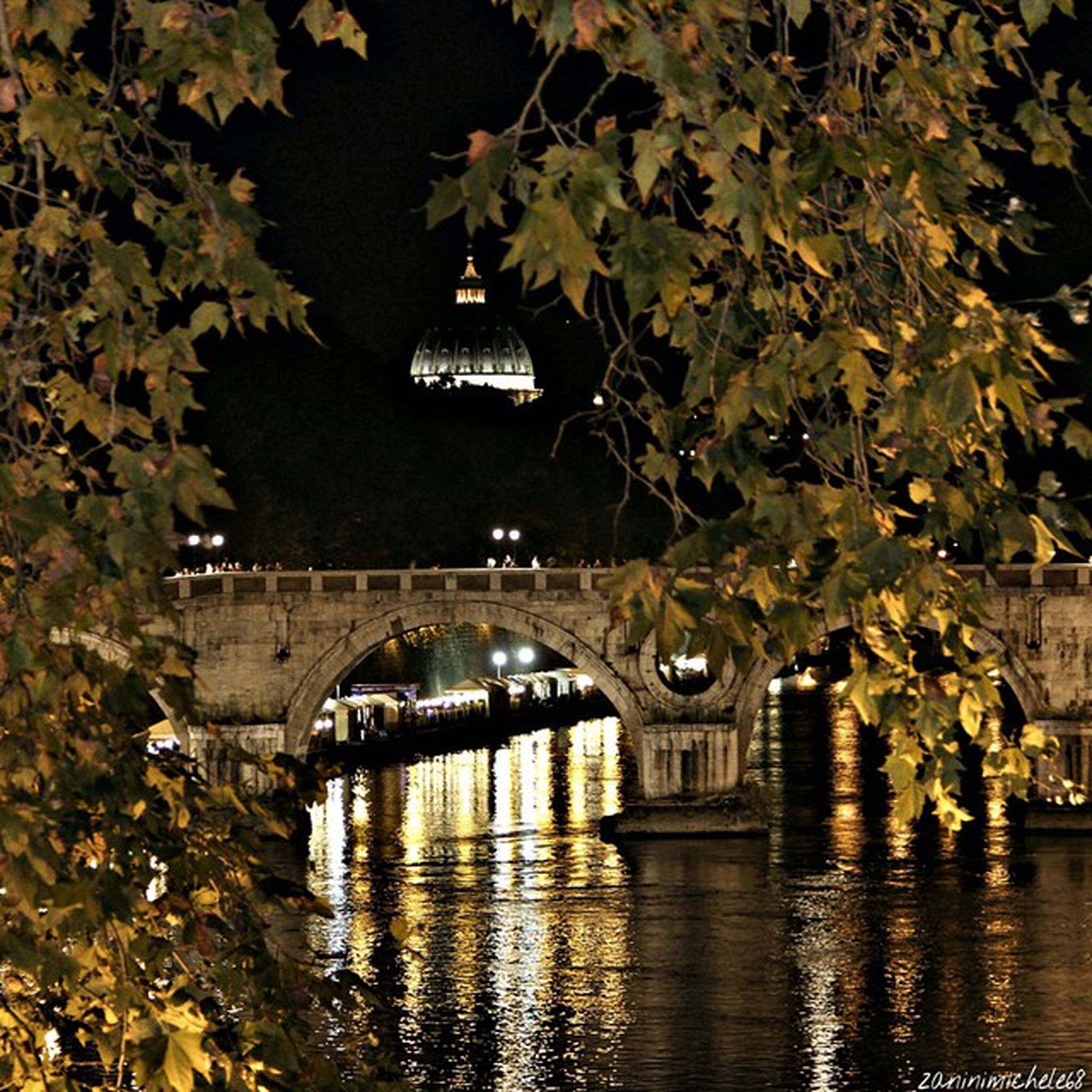 architecture, built structure, tree, water, reflection, bridge - man made structure, connection, building exterior, waterfront, river, arch bridge, canal, bridge, arch, branch, outdoors, growth, transportation, nature, no people