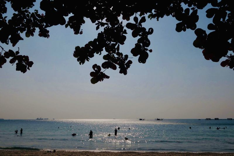Water Sky Sea Beach Nature Land Scenics - Nature Beauty In Nature Holiday Tree Silhouette Outdoors Vacations Trip Horizon