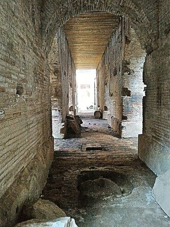 Underground Anphitheater of S.M. Capua Vetere Anphitheater Roman Ruins Spartacus Gladiators Blood And Sand Mistery Atmosphere History Historical Building Historical Monuments Historic Site History Architecture Historical Place
