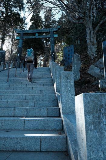 Rear view of woman walking on steps