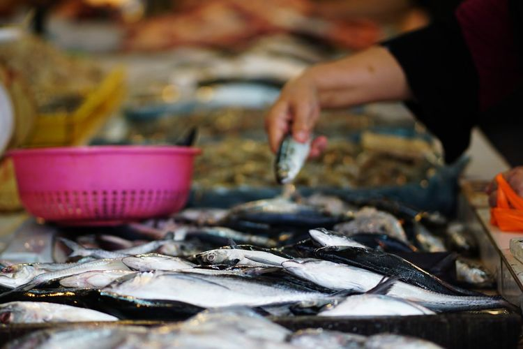 Streetphotography Wetmarket Wetmarketscene Fish Cold Temperature Gourmet Crustacean Market Seafood Fish Market Business Fish Business Finance And Industry Ice Catch Of Fish Fishing Industry Market Stall For Sale Stall Display Retail Display