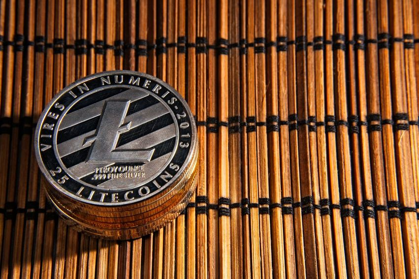 Shining metal LTC litecoin coins on bamboo background. BTC Deep Web Economy Gold LTC Virtual Bamboo - Material Bitcoin Blockchain Close-up Coins Crypto Cryptocurrency Cryptography Currency Dark Web Digital Finance Litecoin Money Trade