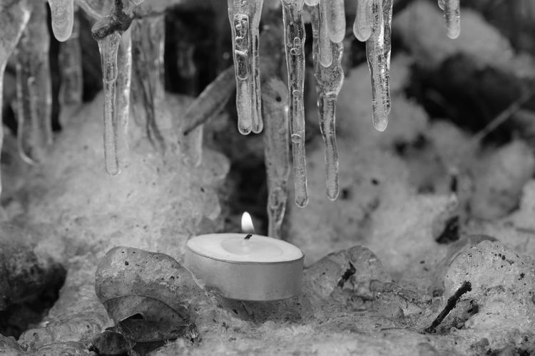 Beautiful Nature Black & White Black And White Branches Candle Elegant Literally Fire & Ice Flame Frozen Frozen Nature Ice Ice Cycles Serenity Macro Nature Nature On Your Doorstep Showcase: February Tealight Twigs Candle Light Winter No Edit/no Filter Fire And Ice Backgrounds